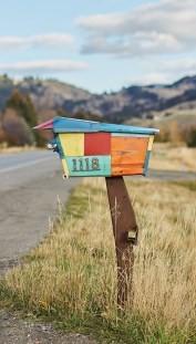 The whimsical mailbox echoes colors and motifs found inside the home.