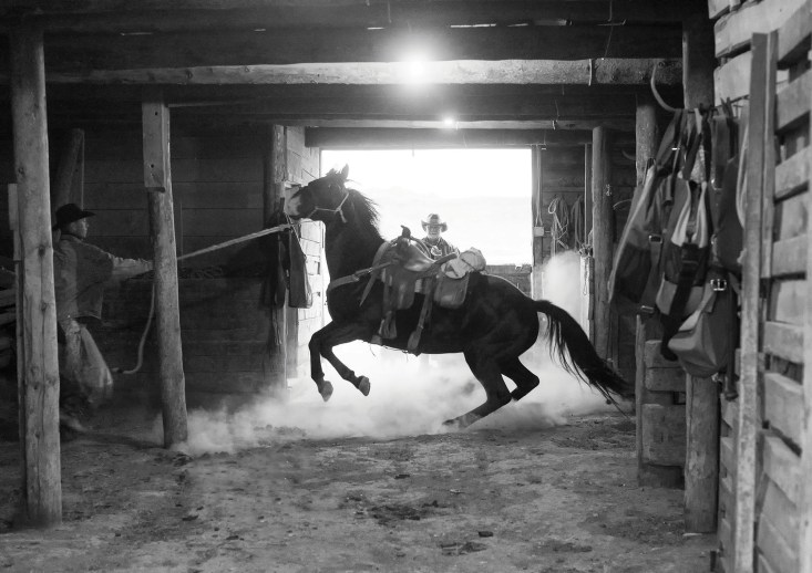 Barry Crago holds a spirited horse in a Willow Creek barn while Clint Black looks on.