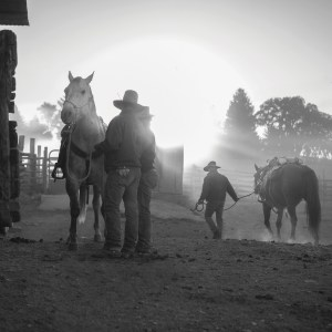 Willow Creek Ranch cowboys saddle their horses as the sun rises behind them.