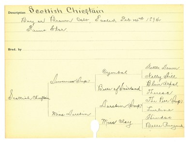 Scottish Chieftain's birth card