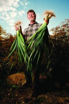 Joel Ellefson grows organic vegetables for the Bozeman Community Food Co-op at his small farm in Manhattan, Mont.