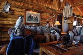 "Chindgren's ""House of Grouse"" in Eden, Wyoming, is a monument to birds and falconry."