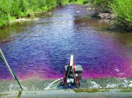 purple_water.jpg