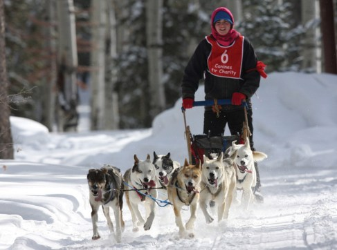 Dog sled races around the region | Photo by Curt Hoven
