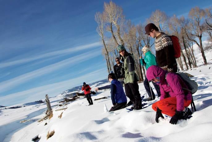 Lamar Buffalo Ranch, 2015 Yellowstone Association/Maria Bisso