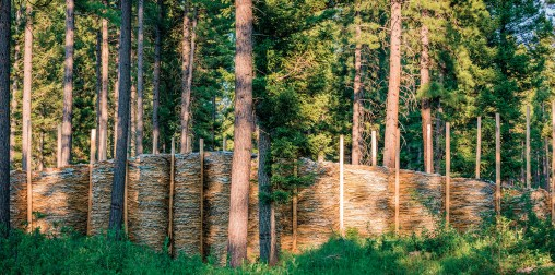"""""""Hill and Valley"""" 
