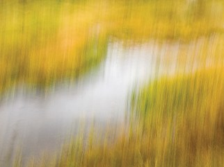 """""""Fall Color 11"""" 