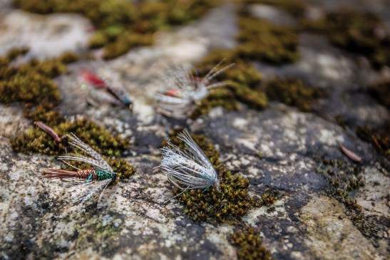 Soft-hackle wet flies are beautiful in their simplicity, and offer a surpassingly easy method of fishing for those new to the sport.