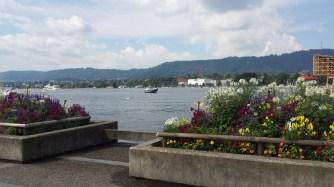 Zurich lake is pretty