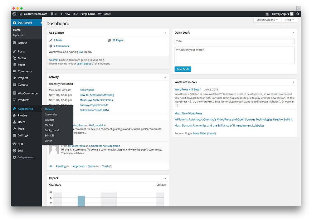 install-new-wordpress-theme