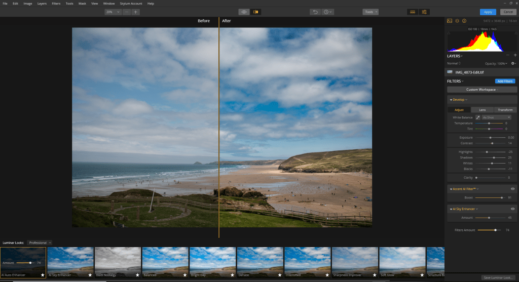 Luminar Flex review