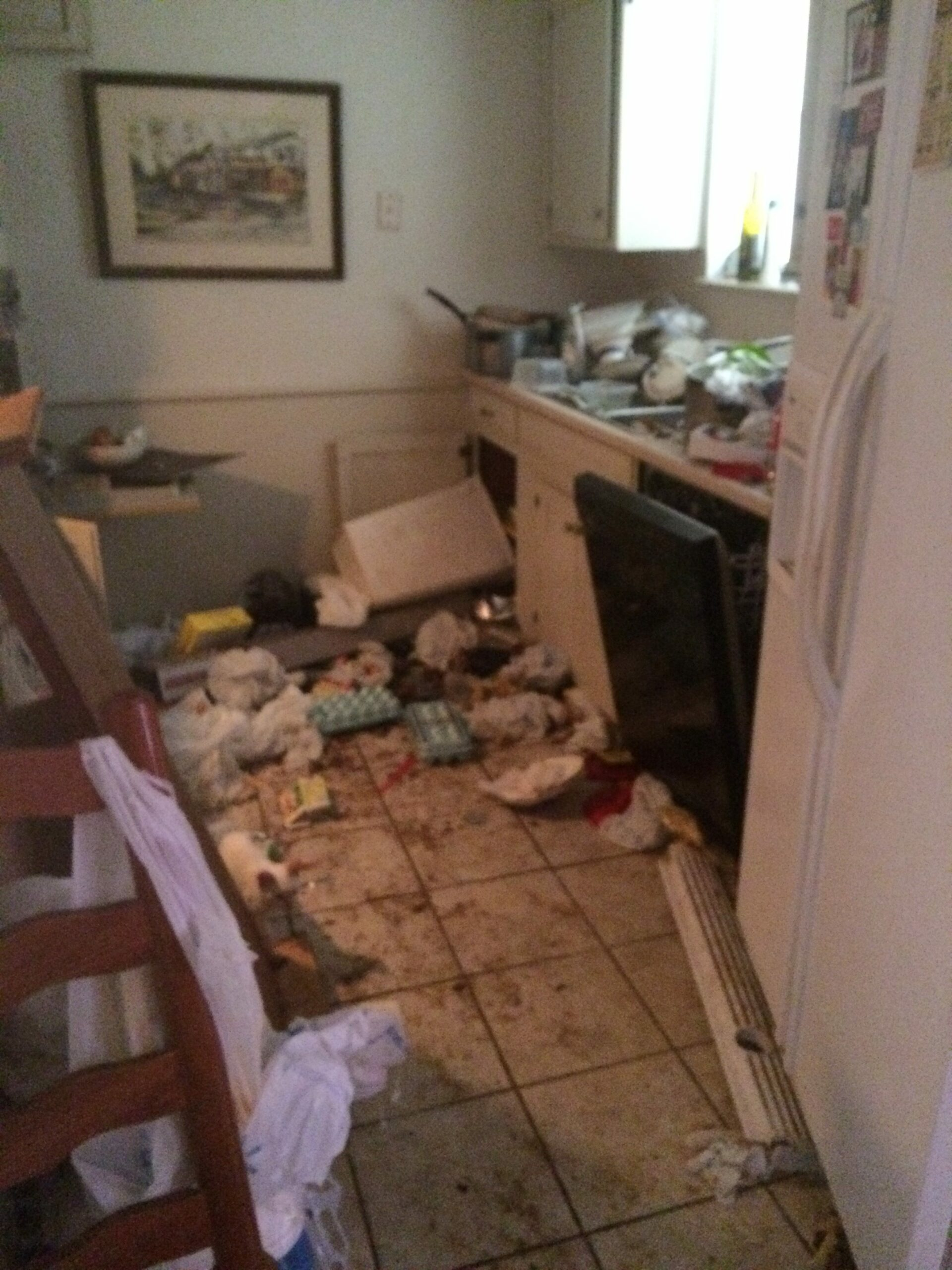 Arlington hoarder house kitchen before
