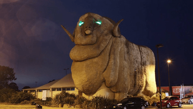 The Big Merino glow