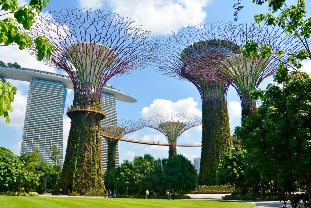 Gardens By the Bay During the Day, Singapore