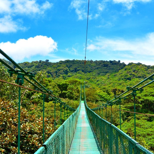 Hanging bridge in Monteverde, Costa Rica