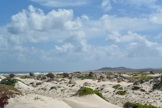 California Sand Dunes
