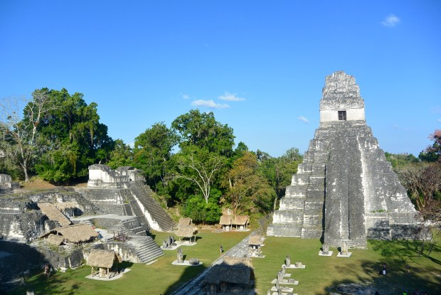 View of Tikal