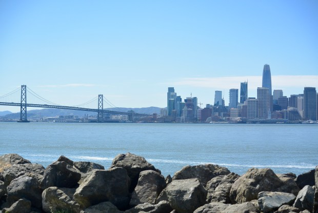 View of San Fransisco from Treasure Island