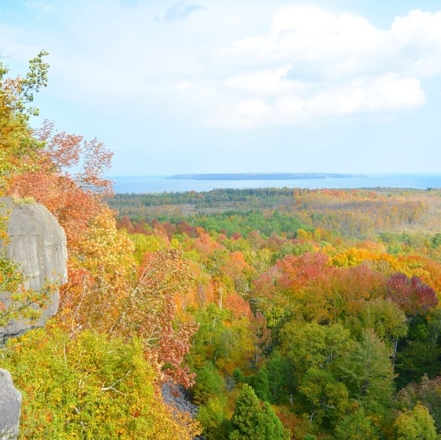 Fall Colours at Skinner's Bluff