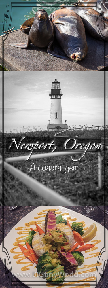 Newport Oregon: A Coastal Gem | BIG tiny World Travel | The Pacific Northwest has so many beaches to explore.  Newport is one of the many the Oregon Coast has to offer | #oregoncoast #travel #travelcouple #travelblog #beaches #pacificnorthwest