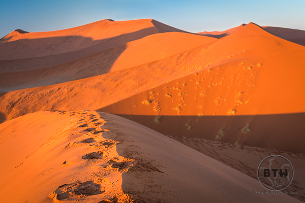 dunes-1