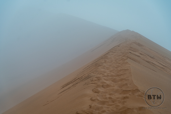 Big daddy dune fog