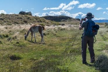 fauna-trail-4