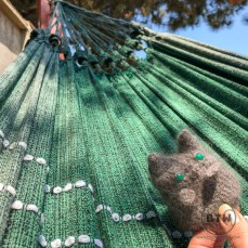Hammock dreams