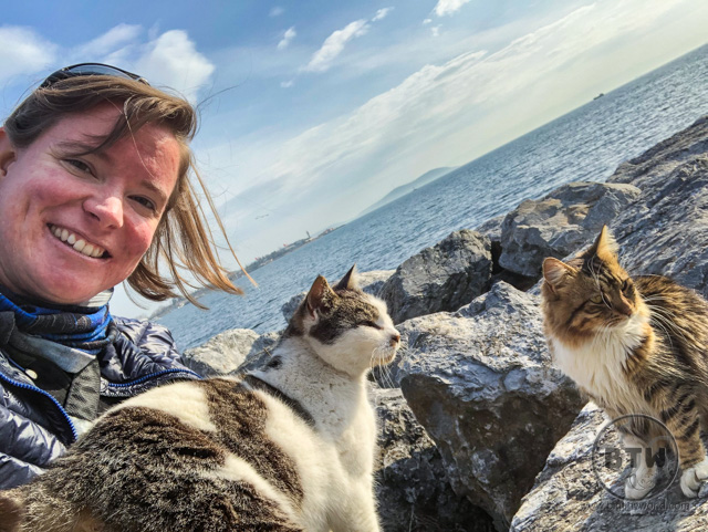 Brianna sitting with two cats on the rocks of Kadikoy in Istanbul, Turkey