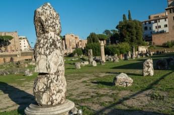 roman-forum-6