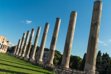roman-forum-8