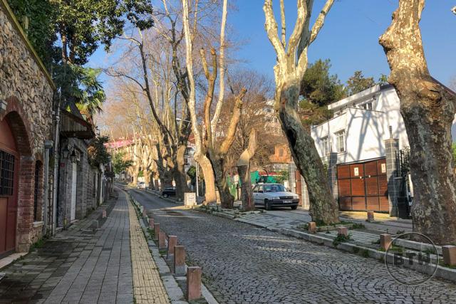 A street in Emirgan, a neighborhood in Istanbul, Turkey