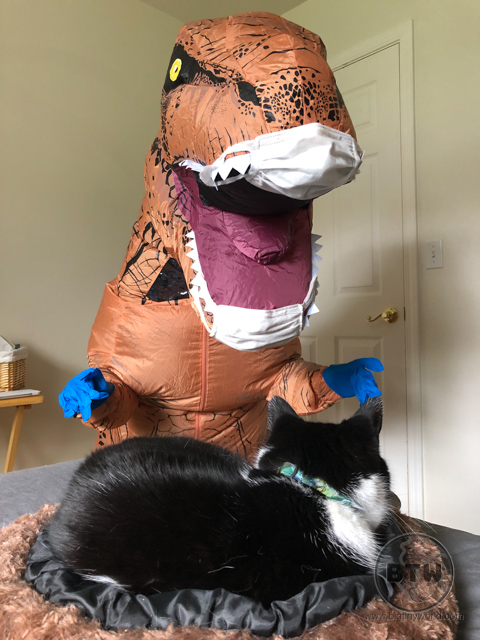 Aaron in a dino suit with gloves and two masks, intimidating Mochi