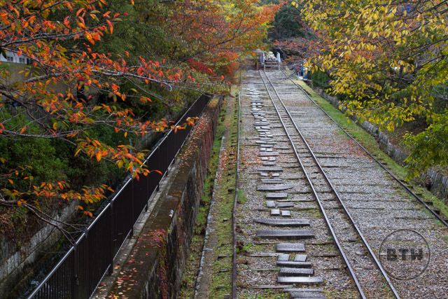 A discontinued railroad track draped in fall color in Kyoto, Japan