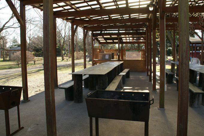 イレブンオートキャンプパーク ピザ窯のスペース