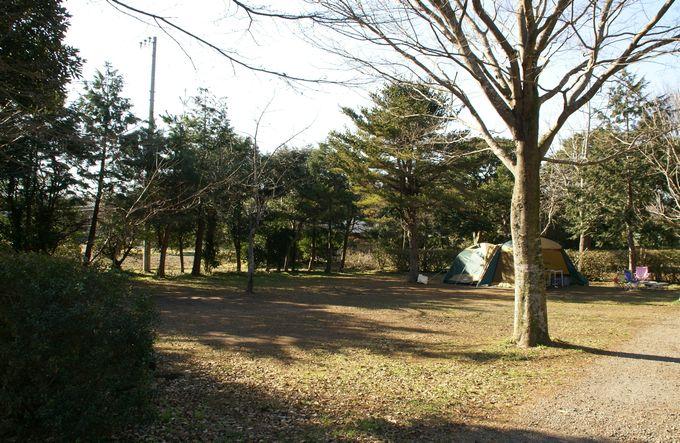 イレブンオートキャンプパーク サイト風景5