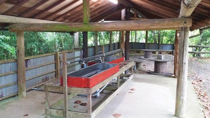 ロマンの森オートキャンプ場 サイト奥の炊事場