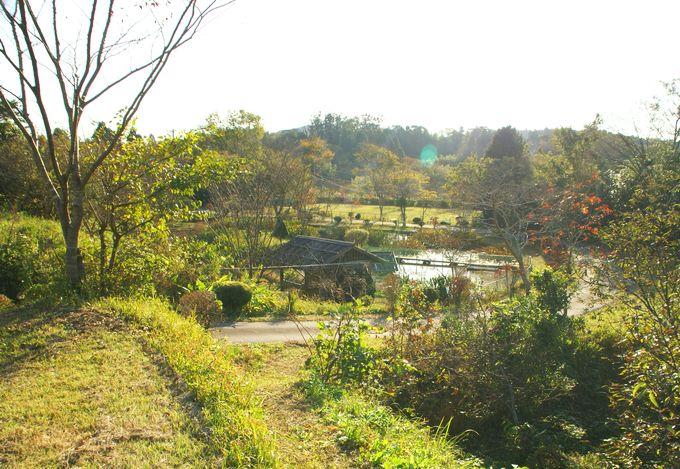 柿山田オートキャンプガーデンの眺め