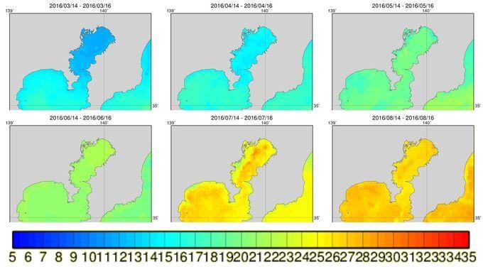 東京湾の海水温データ (2016年)