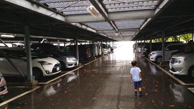 雨だが駐車場には結構な人が居る