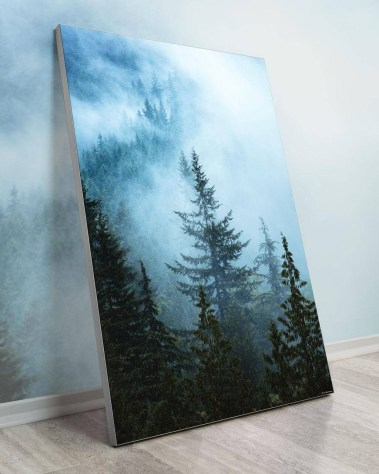 Big Biggest Massive Huge Large Largest Giant Gigantic Wall Décor Art Backlit Fabric Home Deco Artwork Artist Jared Gunderson Landscape Scenic Photography Instagram Trees Fog Pines Forest