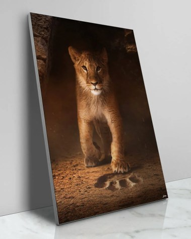Large Surreal Lion Big Cat Portrait Animal Wildlife Surreal Photography by Zenja Gammer
