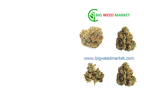 Buy Marijuana Online UK