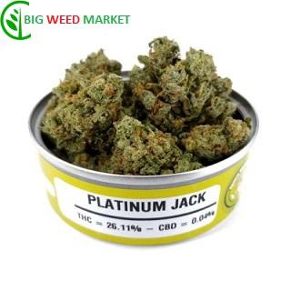 Buy Platinum Jack Weed Can Online Belgium