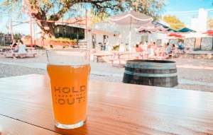 brewpubs in austin
