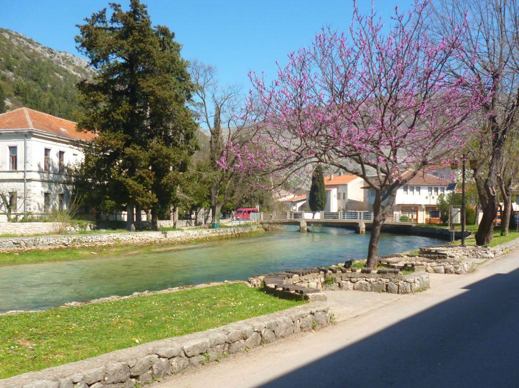 Брегава. Столац. Весна. Фото: Елена Арсениевич, CC BY-SA 3.0