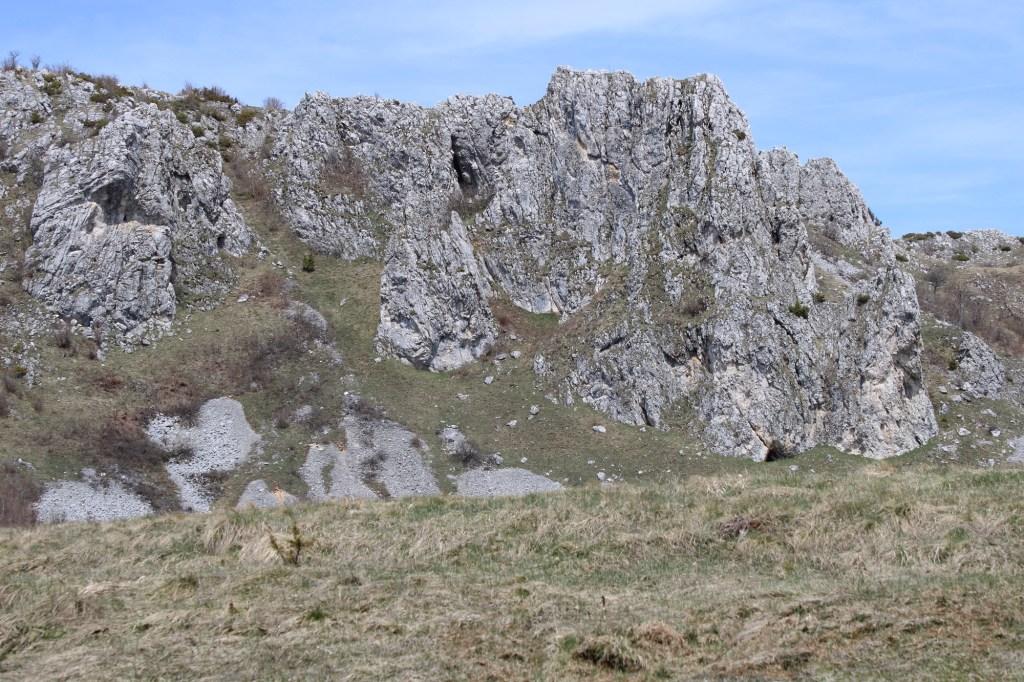 Скальные выступы Купрешского поля. Фото: Елена Арсениевич, CC BY-SA 3.0