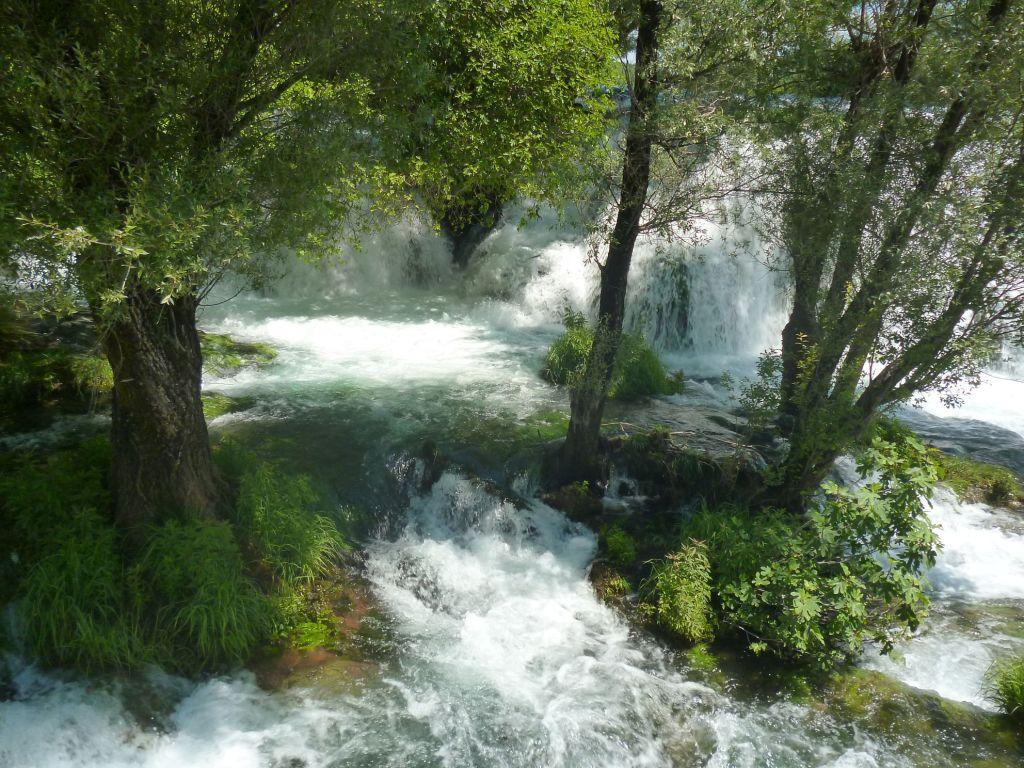 Кочуша. Мир воды. Фото: Елена Арсениевич, CC BY-SA 3.0