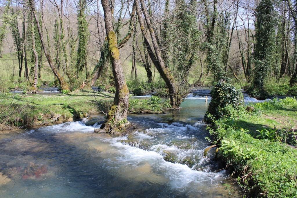 Река Янь. Фото: Елена Арсениевич, CC BY-SA 3.0