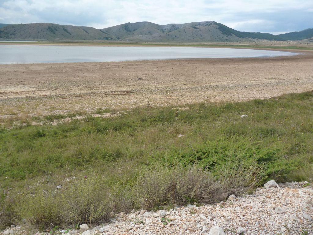 Летом озеро сильно мелеет. Фото: Елена Арсениевич, CC BY-SA 3.0
